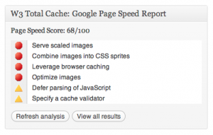 Wordpress plugin W3 Total Cache Page Speed Report
